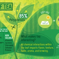 The sciencey bit: what is actually in Tea?
