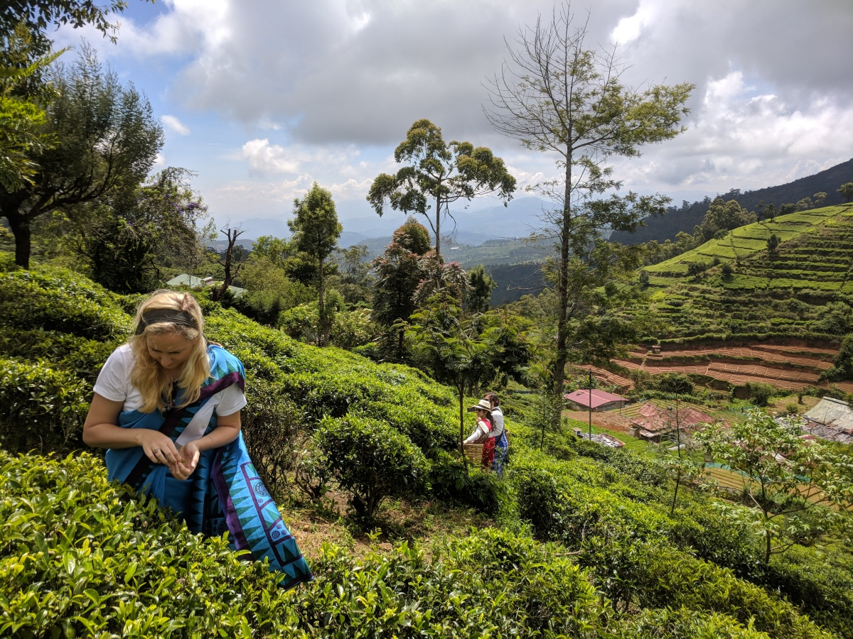 Picking Tea in Sri Lanka (& where have I been?)